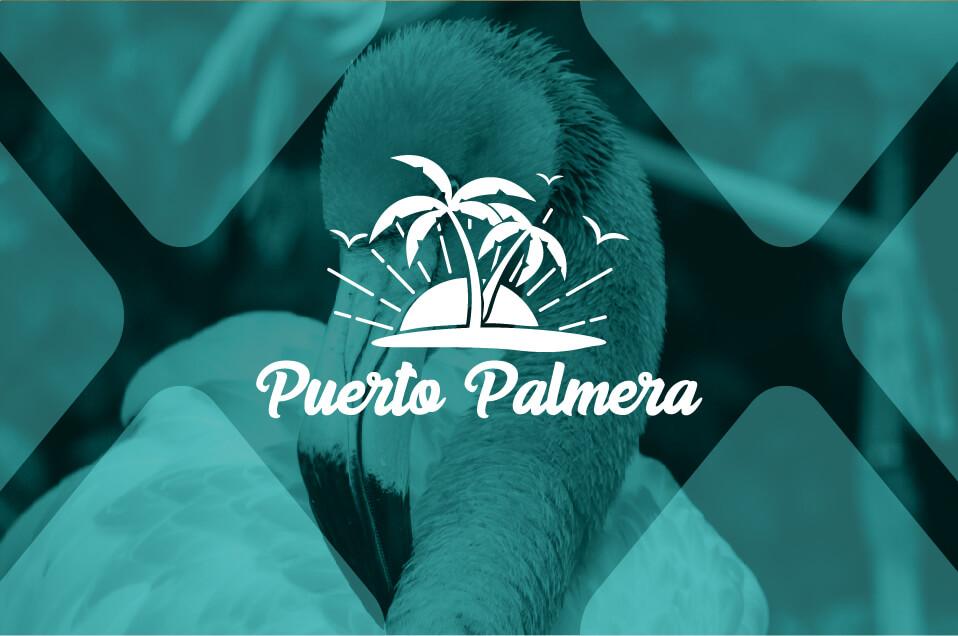 Logotipo con naming