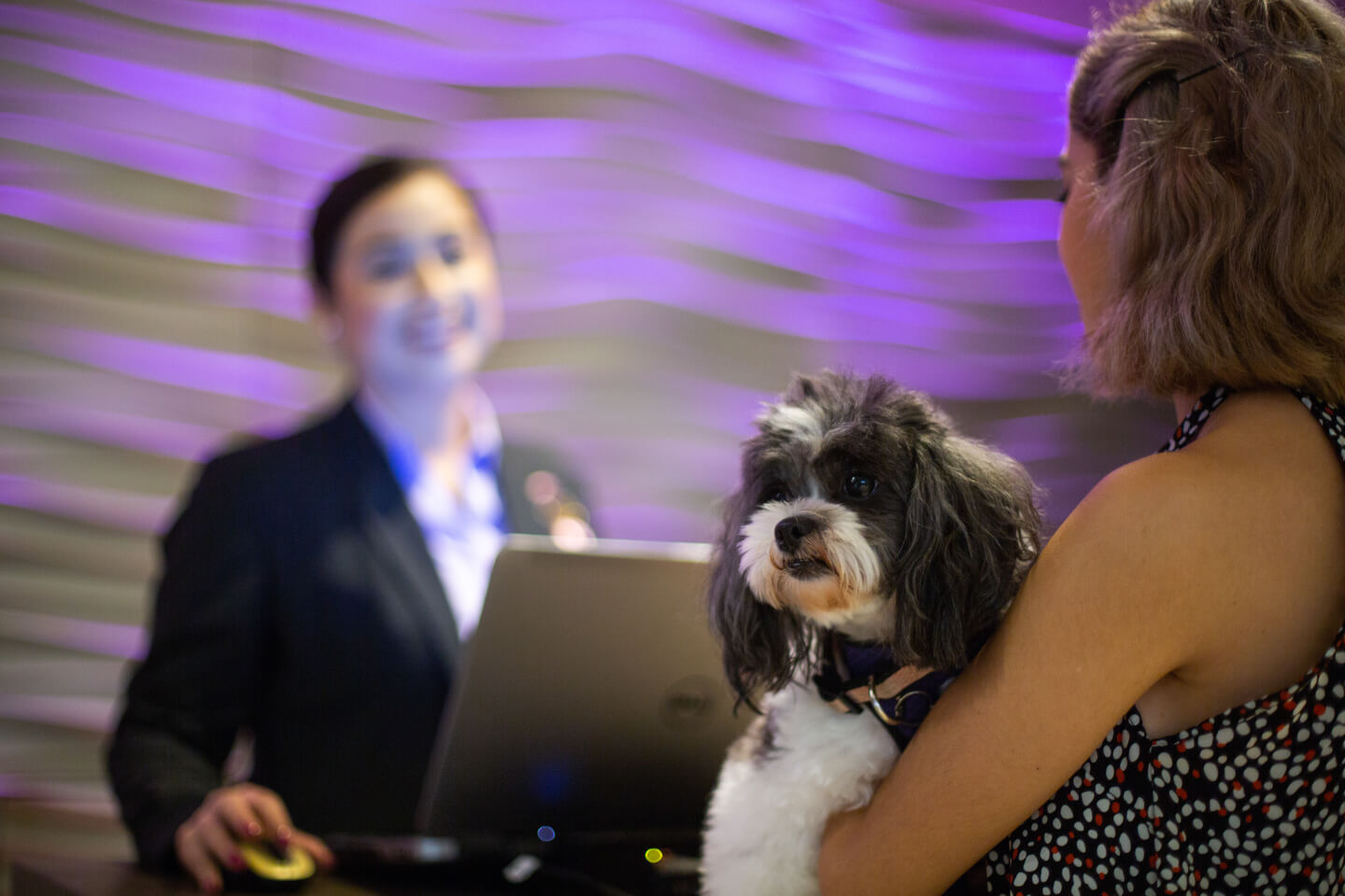 Hyatt-Regency-Mérida-Pet-Friendly-7