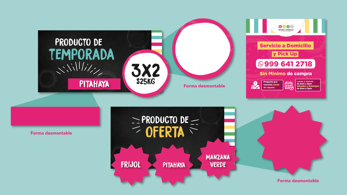 FullFrame-Photomkt-Portafolio-Divina-Cosecha-Mockups (3)(1)