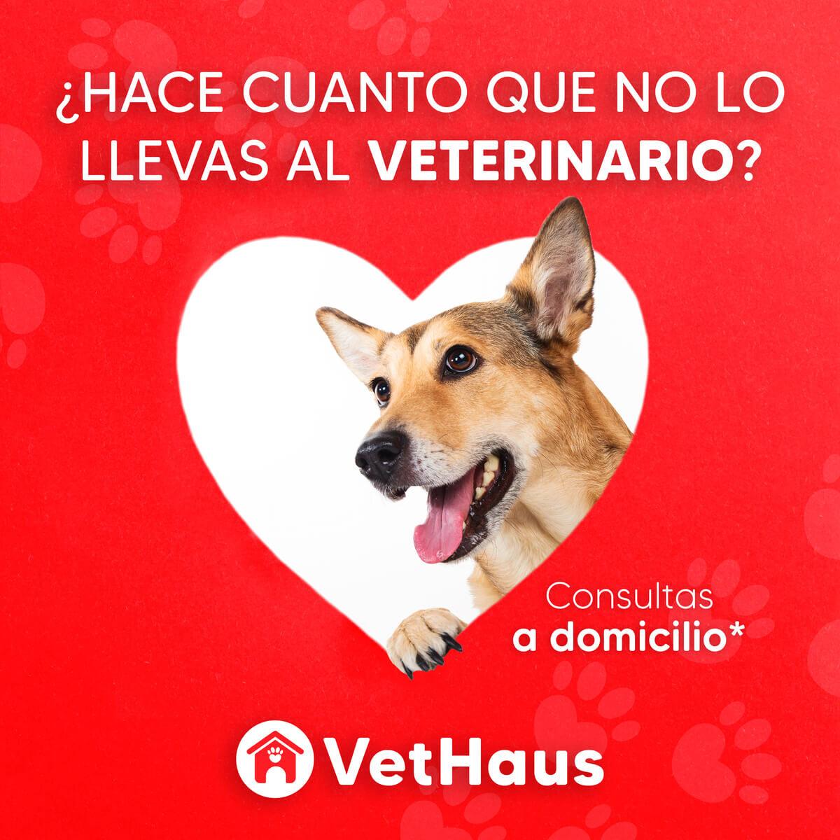 Vethaus