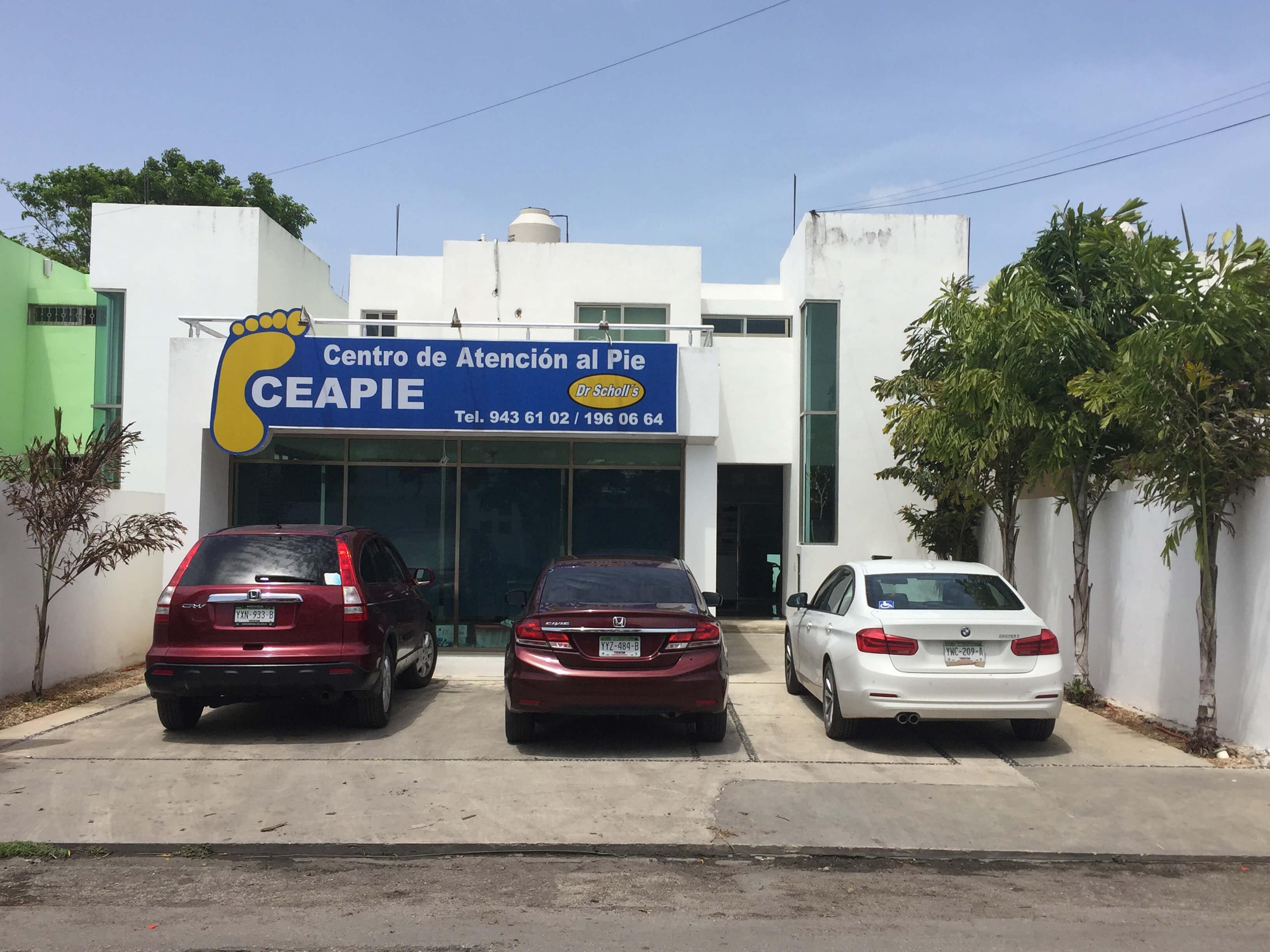 CEAPIE-Pinos-Antes-1