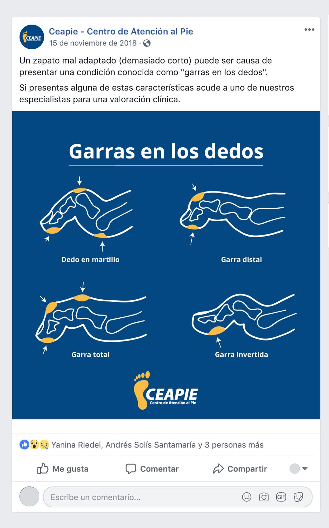 CEAPIE-SOCIAL-MEDIA-REDES-SOCIALES-3