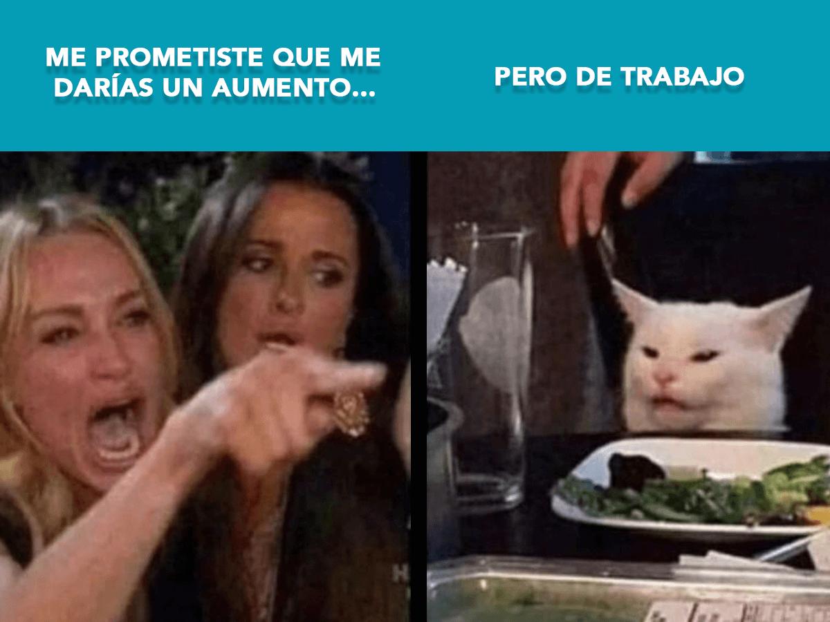 Blog-FullFrame-Photomkt-Los-Mejores-Memes-2019-Memes (3)