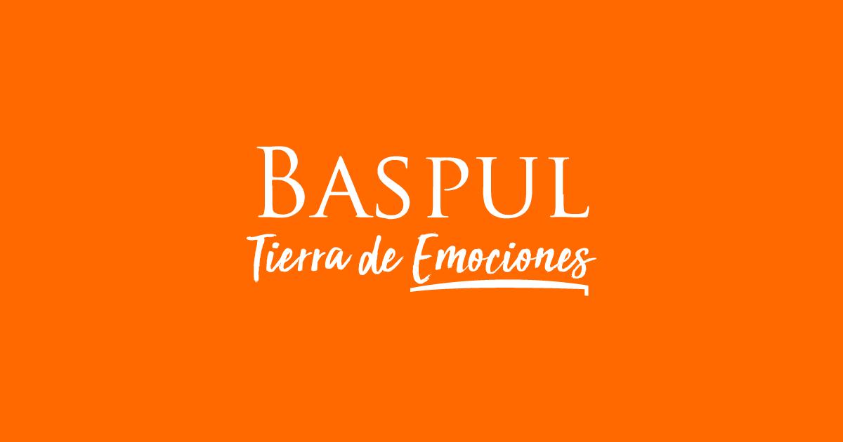 Baspul_Mesa de trabajo 1